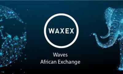 Waves African Exchange