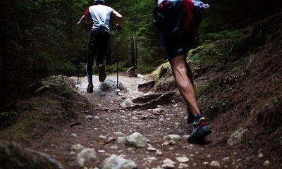 IOTA [MIOTA] June trail: Updates and Upgrades!