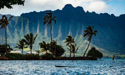 Cardano [ADA]'s distinct updates during Charles' 'Workation' in Hawaii