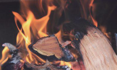 KuCoin earns profits after buy back and burn of KCS token
