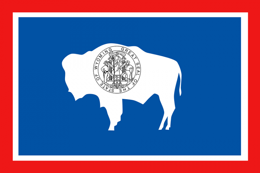 Wyoming Senate passes bill recognizing Bitcoin [BTC] and other cryptocurrencies as money