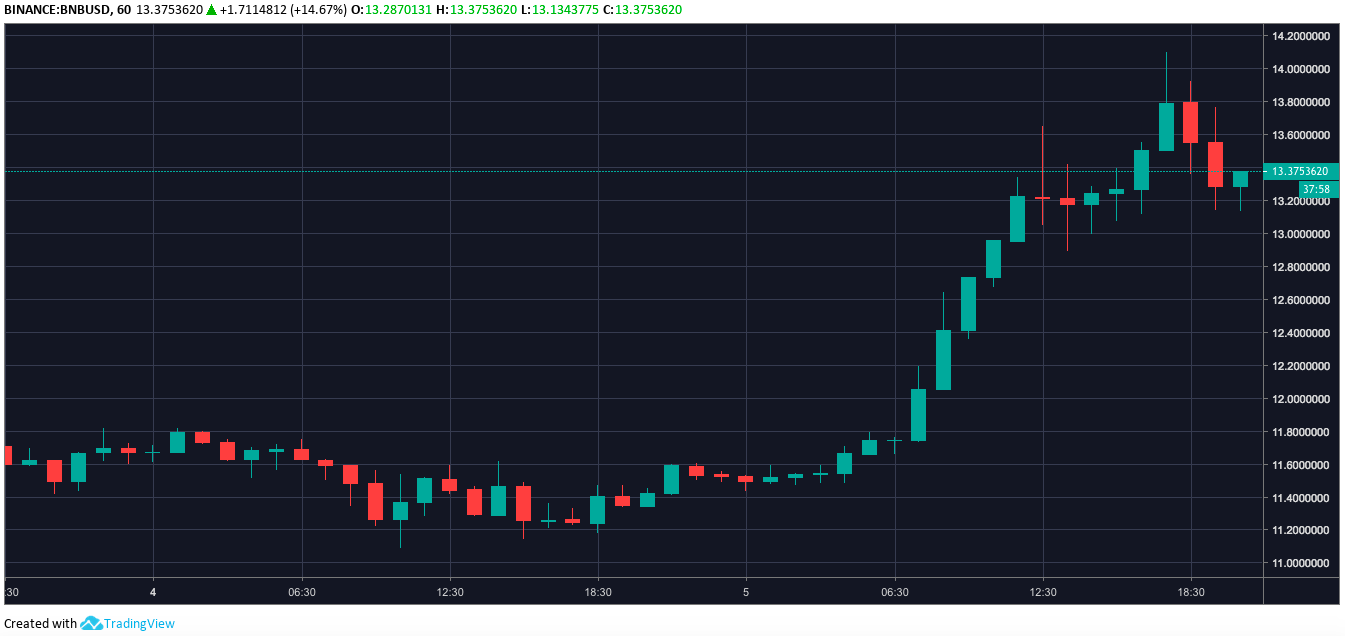 Binance Coin one-hour price chart | Source: Trading View