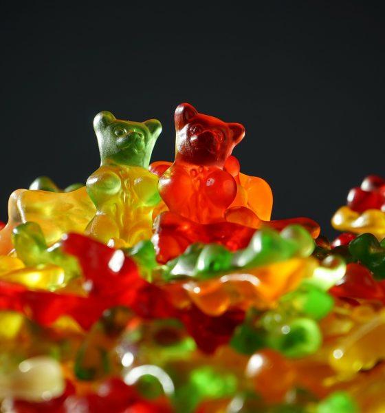 Bitcoin [BTC/USD] Price Analysis: Bears take over coin as bulls lose momentum