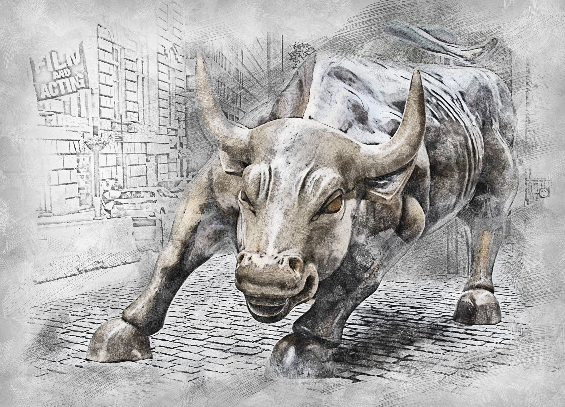 [Image: bull-3112617_1920.jpg]