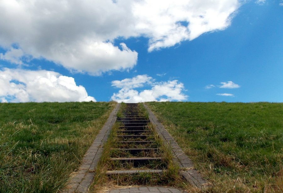 Bitcoin's [BTC] value rises with emergence of new altcoins, claims Galaxy Digital's Mike Novogratz