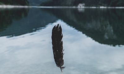 Bitcoin [BTC]: There is a difference between this price rise and 2017 rise, says Barry Silbert